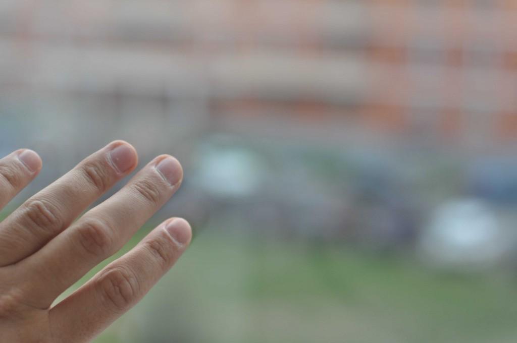 Чистоту невозможно сфотографировать. Фотоаппарат отказывается фокусироваться на стекле - фото-автоматика считает, что стекла просто нет.